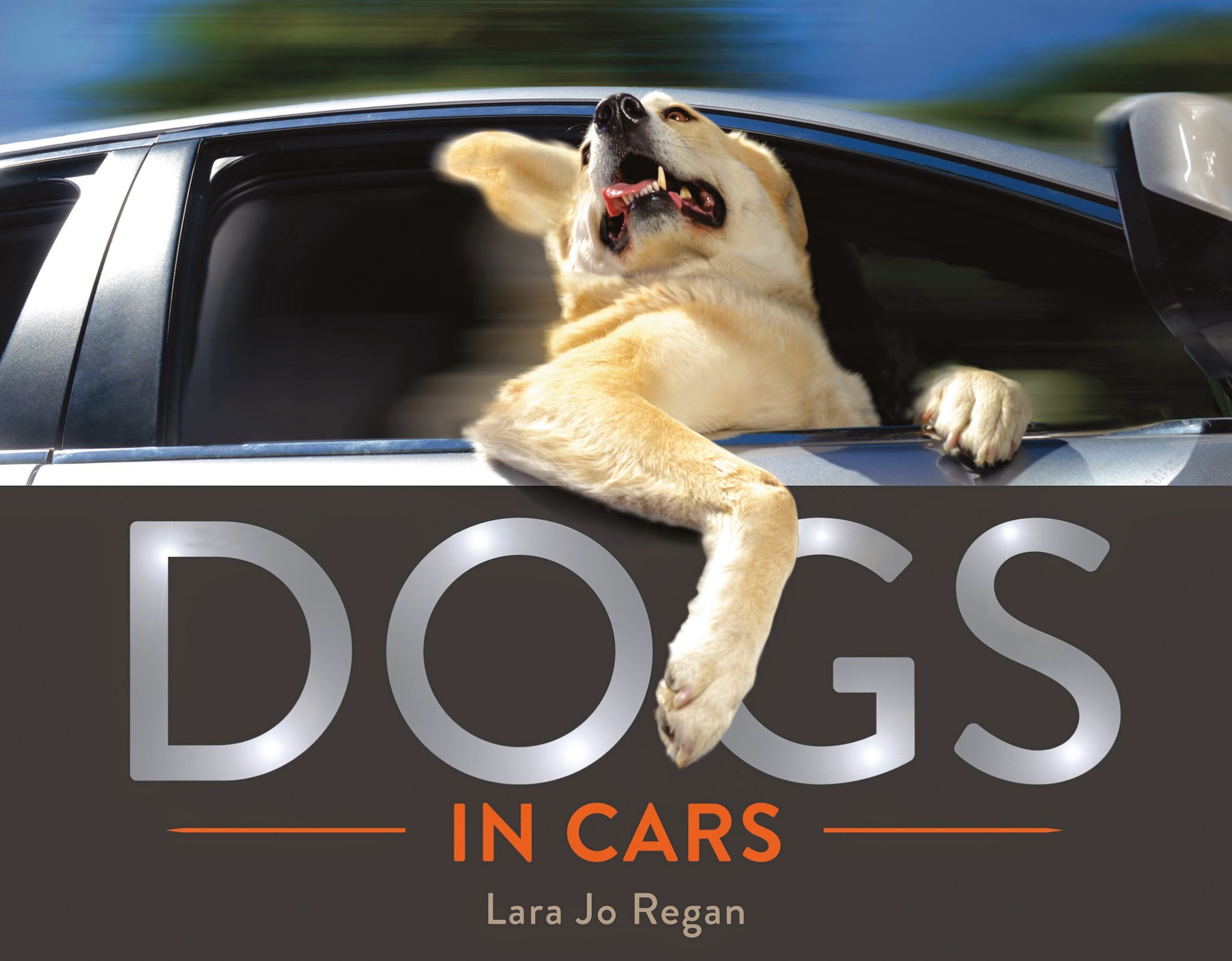 Almost Human: Pets and Animals Books for Fall 2014