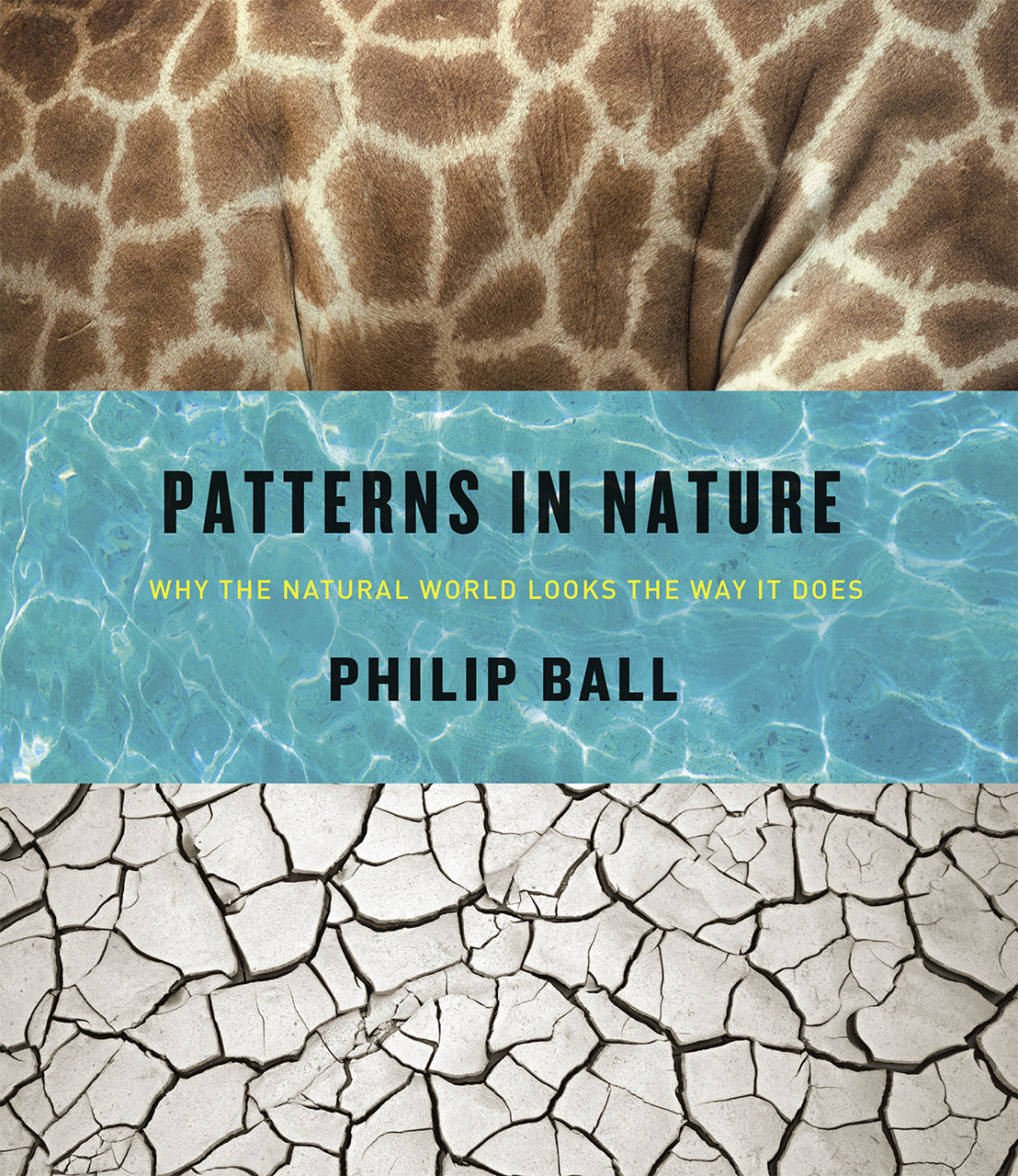The Most Beautiful Book Of 2016 Is Patterns In Nature