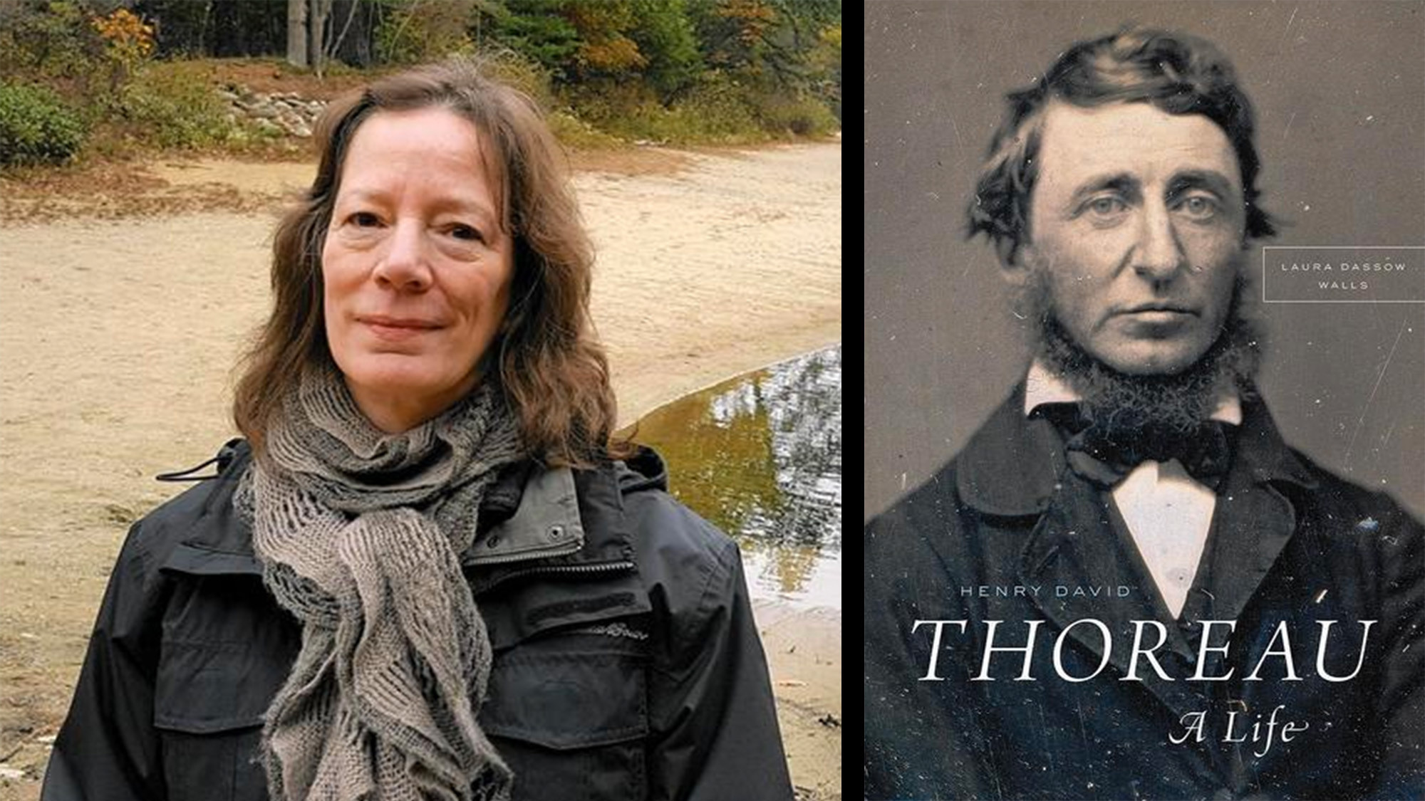 why is henry david thoreau credible A statue of henry david thoreau in front of a replica of his cabin in concord,   and sometimes questionable – in both taste and credibility.