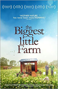 Some Pig: A Filmmaker-Turned-Author Shares Stories from a Regenerative Farm