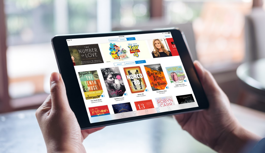 ALA 2019: ALA Council Votes to Take E-Book Issues to the Public, Congress
